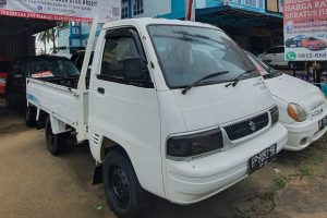 PICK UP CARRY FUTURA WD 2013